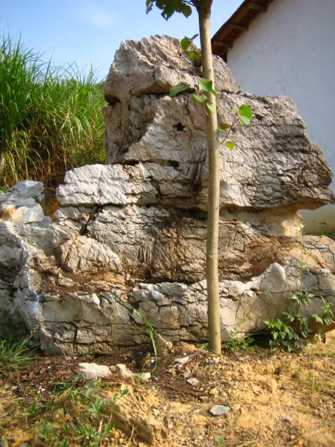 英德石 景观石供应