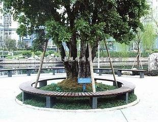户外花箱/树池/树围 公园椅防腐木花盆/花架/凉亭-室外设施 室外设施价