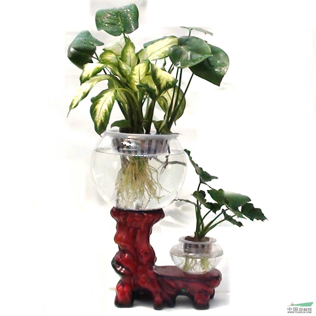 简笔画 花瓶/花瓶园林小品 花瓶简笔画 雕刻花瓶 泡手机图片...