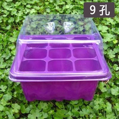 9孔塑料育苗箱九孔育苗盘 彩色育苗盒三件套穴盘育苗块保温保湿