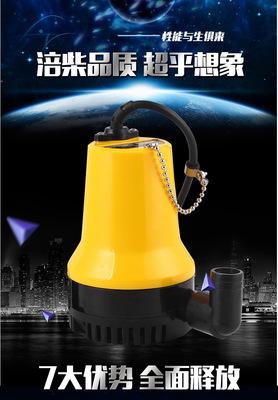 12V24V直流水泵电动车浇地农用抽水机船用潜水泵小型水泵