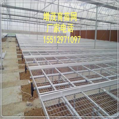 丝径4毫米现货网片/苗床厂家大棚种植 生态园林护栏网