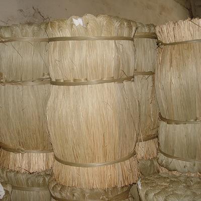 批量出口优质水草 粽绳 草绳长度约1.6米水草 原产地农户收购