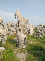 单独成景的太湖石典石