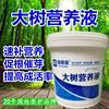 大树营养液 森泰美大树营养吊针液 园林绿化营养输液水
