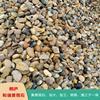 浙江天然风景石  地暖豆 滤料